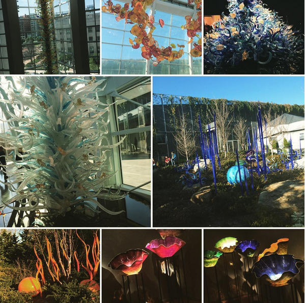 A collage of blown glass works made by the employees of sculptor Dale Chihuly.